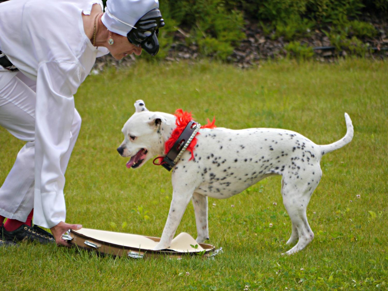Giornata Disc Dog da Giardango
