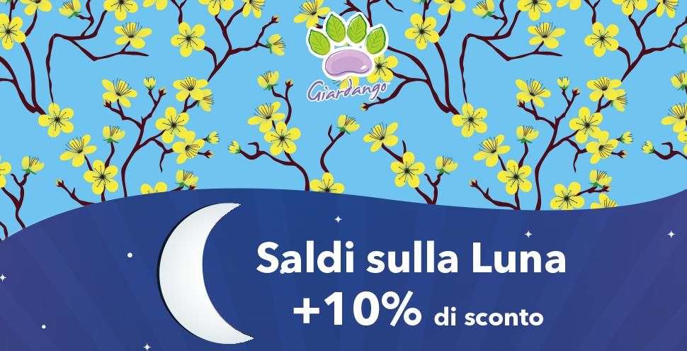 7 Luglio: Saldi sulla luna
