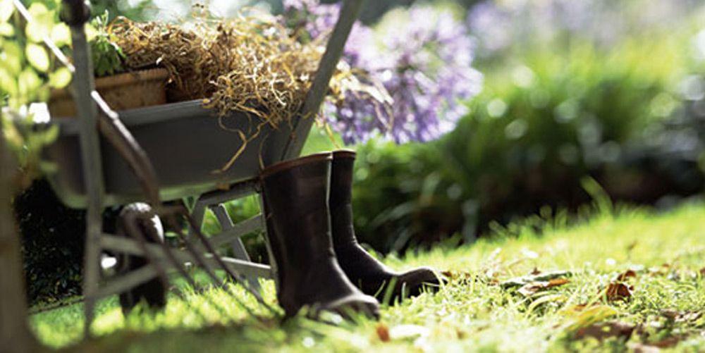 Giardinaggio e orto