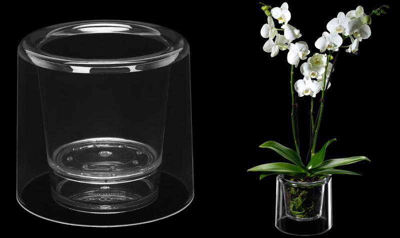 Come curare le orchidee tutti i segreti giardango - Vasi per orchidee ...