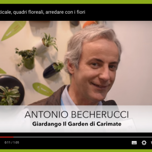 intervista becherucci