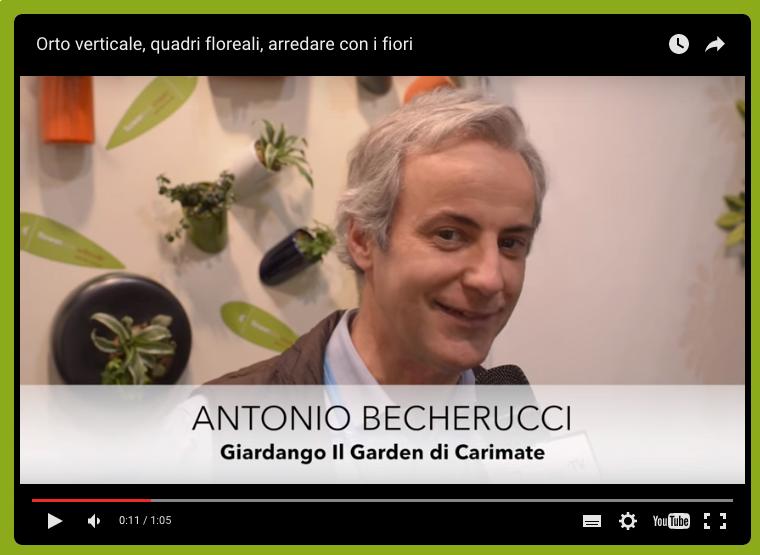 intervista becherucci