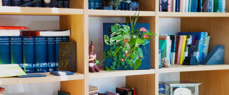 Regala un Flowerbox