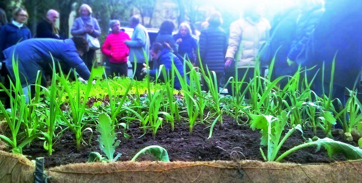Incontro gratuito sui nuovi orti bioattivi e la coltivazione a Metri 0
