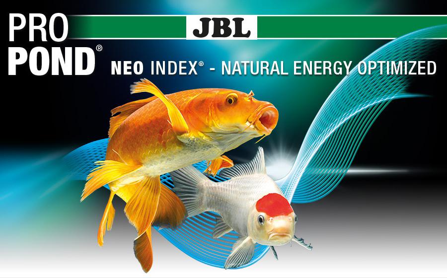 JBL Pro Pond - L'alimentazione professionale dei peschi da laghetto
