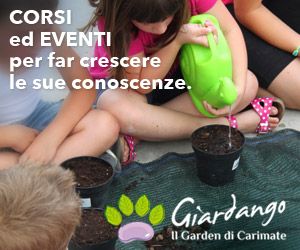 MR Corsi ed Eventi da Giardango for MonzaToday