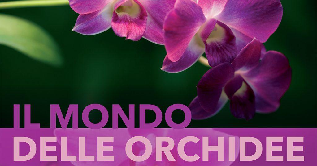 orchidee-da-giardango