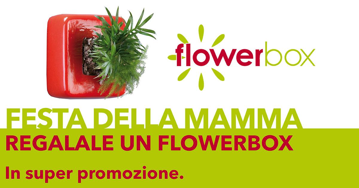 festa-della-mamma-idee-regalo-fiore-flowebox-da-giardango