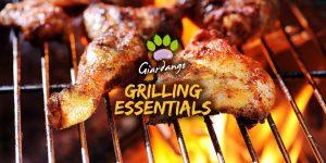 """Corso di Cucina a Barbecue """"Grilling Essentials"""""""