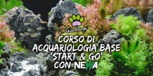"""Corso di acquariologia base """"Start & Go"""""""