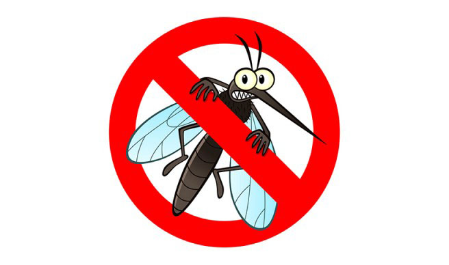Stop alle zanzare